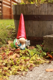The welcome home gnome....